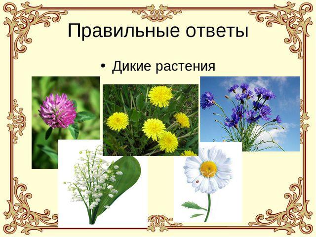 Правильные ответы Дикие растения