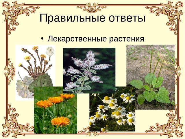 Правильные ответы Лекарственные растения