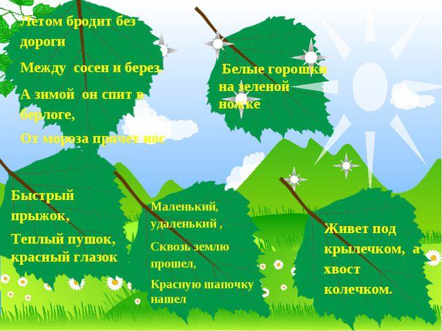 Белые горошки на зеленой ножке Маленький, удаленький , Сквозь землю прошел,...
