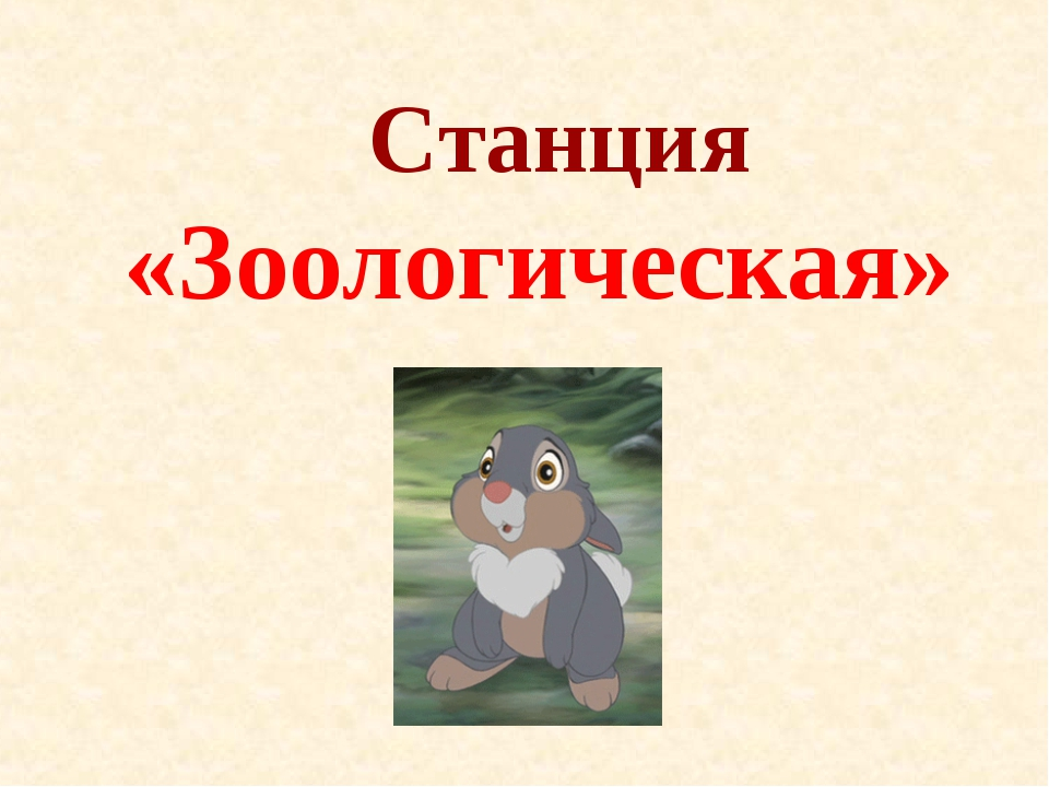 Станция «Зоологическая»