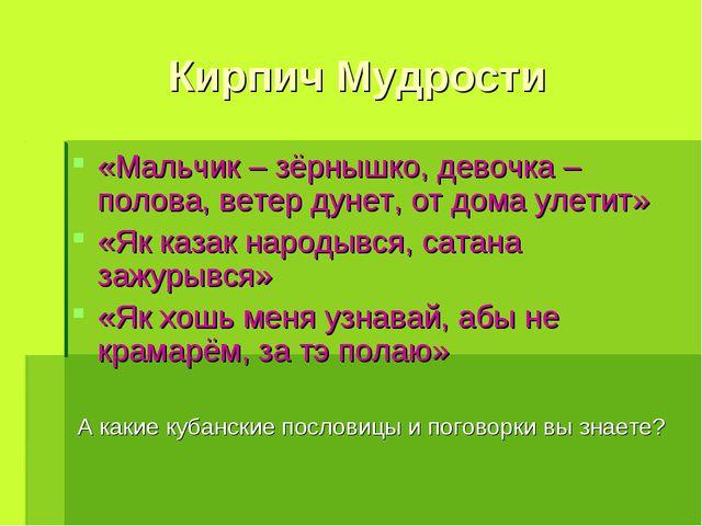 Кирпич Мудрости «Мальчик – зёрнышко, девочка – полова, ветер дунет, от дома у...