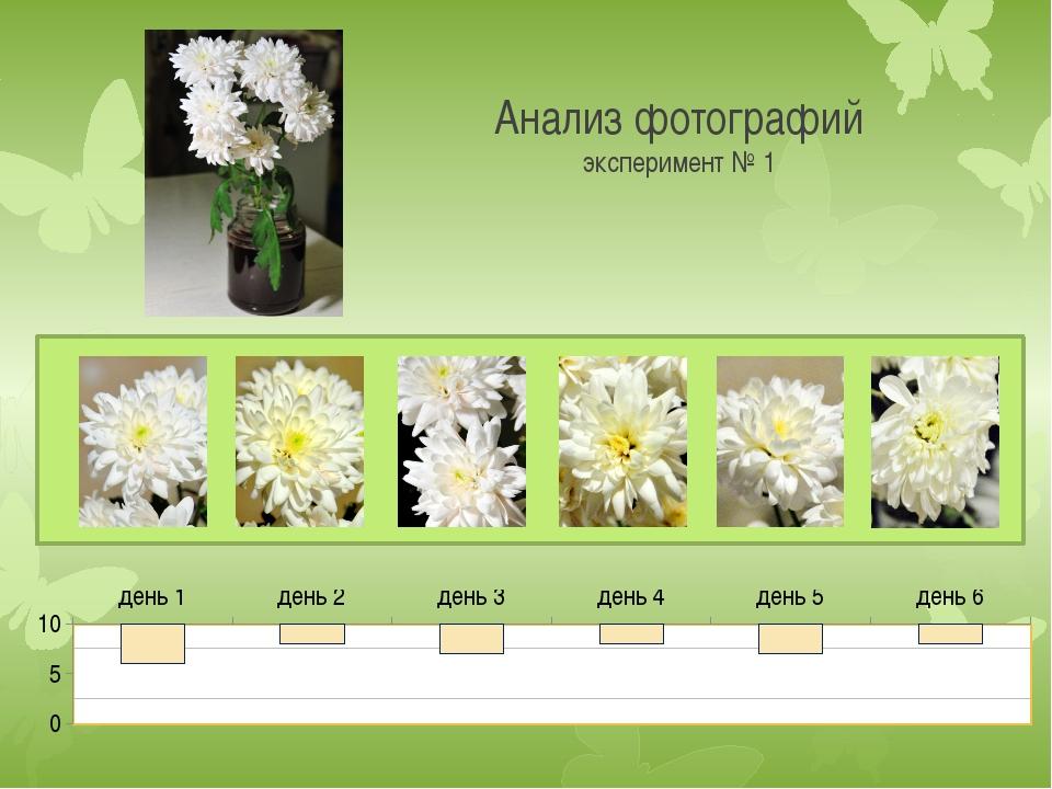 Анализ фотографий эксперимент № 1