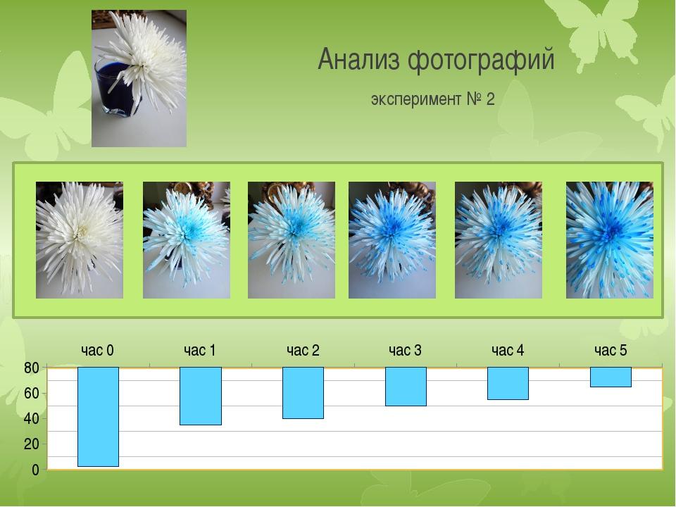 Анализ фотографий эксперимент № 2