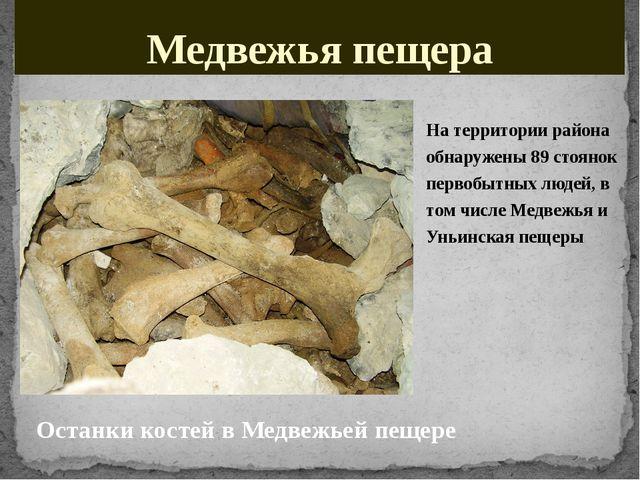 Медвежья пещера На территории района обнаружены 89стоянок первобытных людей,...