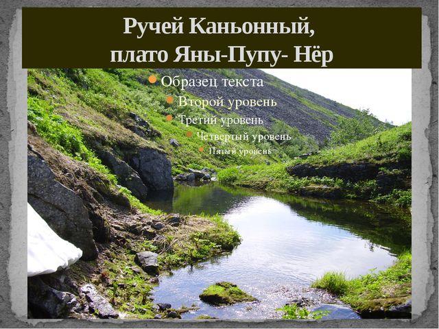 Ручей Каньонный, плато Яны-Пупу- Нёр