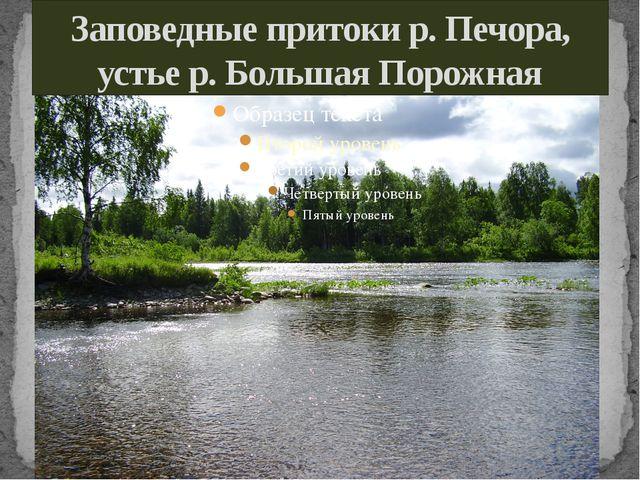 Заповедные притоки р. Печора, устье р. Большая Порожная