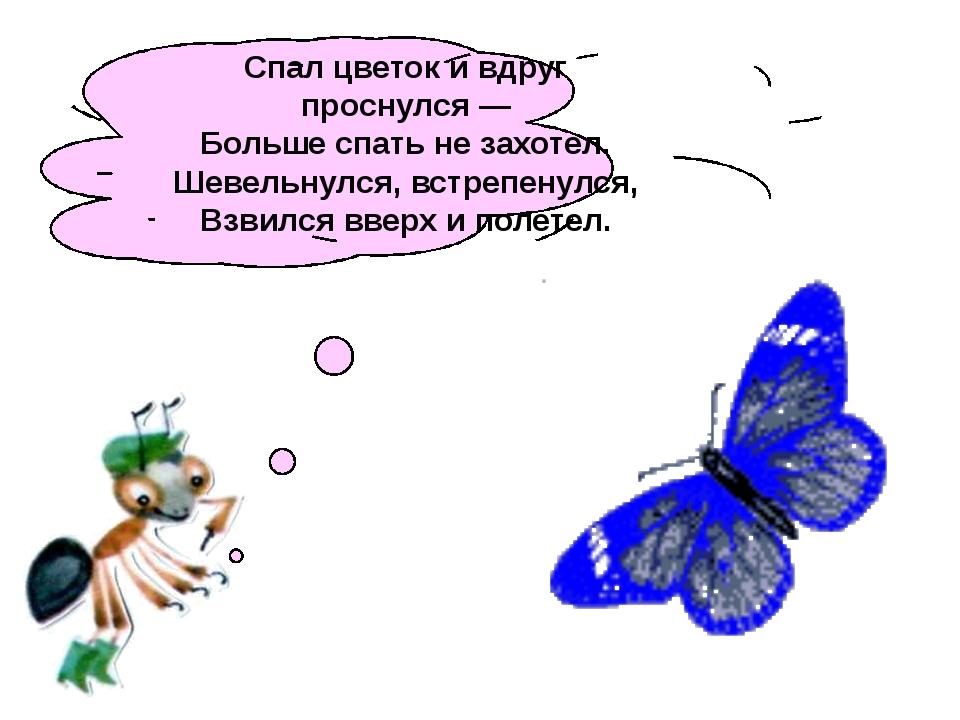 Спал цветок ивдруг проснулся— Больше спать незахотел. Шевельнулся, встреп...