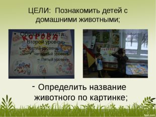 ЦЕЛИ: Познакомить детей с домашними животными; Определить название животного