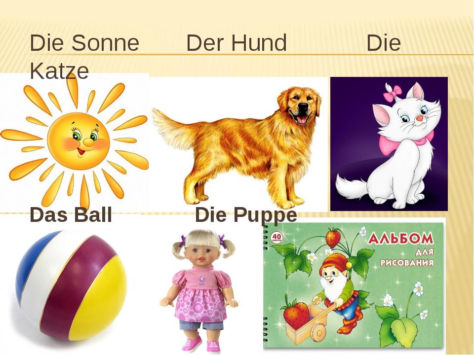 Die Sonne Der Hund Die Katze Das Ball Die Puppe