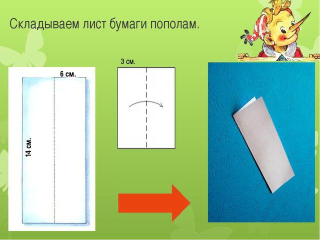 Складываем лист бумаги пополам. 6 см. 14 см. 3 см.
