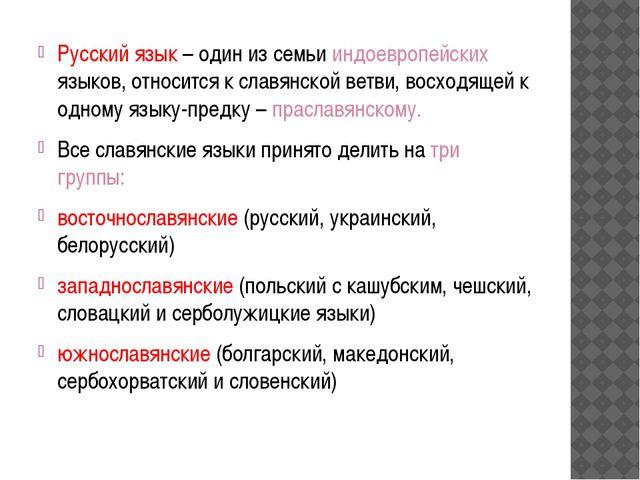 Русский язык – один из семьи индоевропейских языков, относится к славянской в...