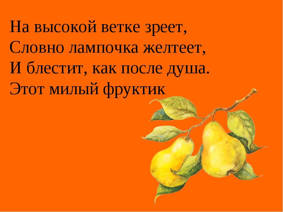 На высокой ветке зреет, Словно лампочка желтеет, И блестит, как после душа....