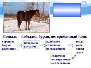 Настроение приятной и светлой мечты Лошадь - кобылка бурая, нетерпеливый конь