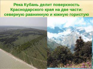 Река Кубань делит поверхность Краснодарского края на две части: северную равн