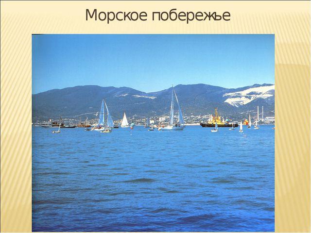 Морское побережье
