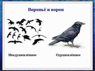 Вороньё и ворон Неодушевлённое Одушевлённое