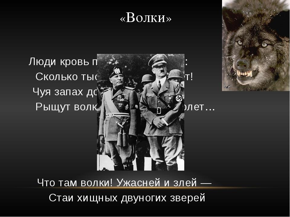 «Волки» Люди кровь проливают в боях: Сколько тысяч за сутки умрет! Чуя запах...