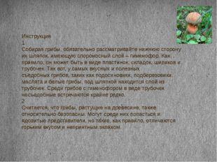 Инструкция 1 Собирая грибы, обязательно рассматривайте нижнюю сторону их шляп