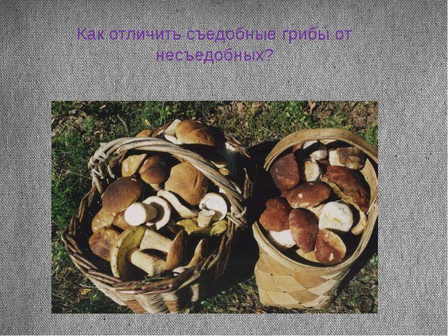Как отличить съедобные грибы от несъедобных?