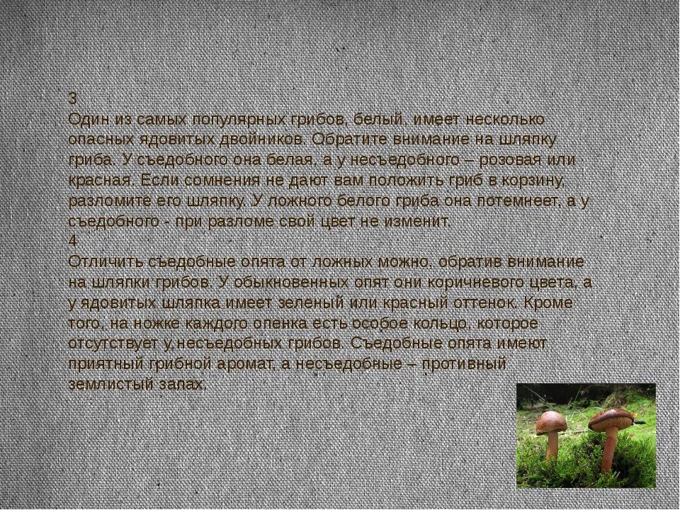 3 Один из самых популярных грибов, белый, имеет несколько опасных ядовитых дв...