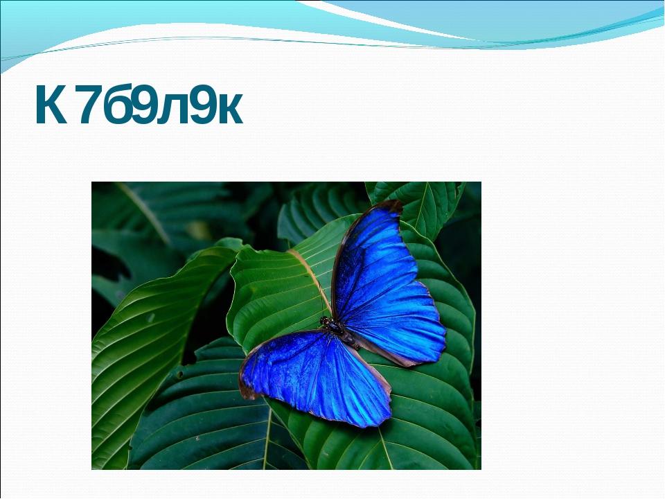 К7б9л9к
