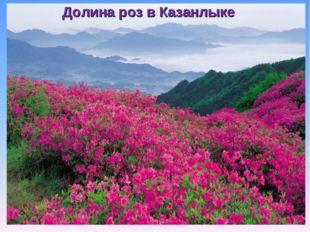 Долина роз в Казанлыке