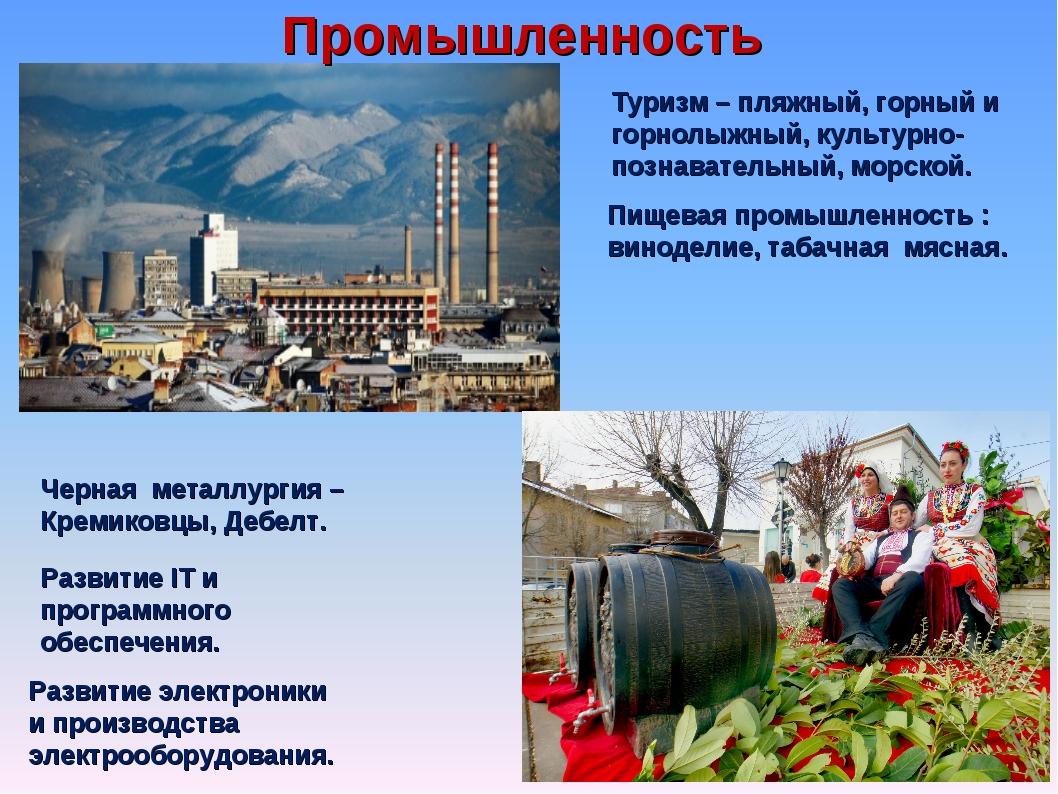Промышленность Черная металлургия – Кремиковцы, Дебелт. Развитие IT и програм...