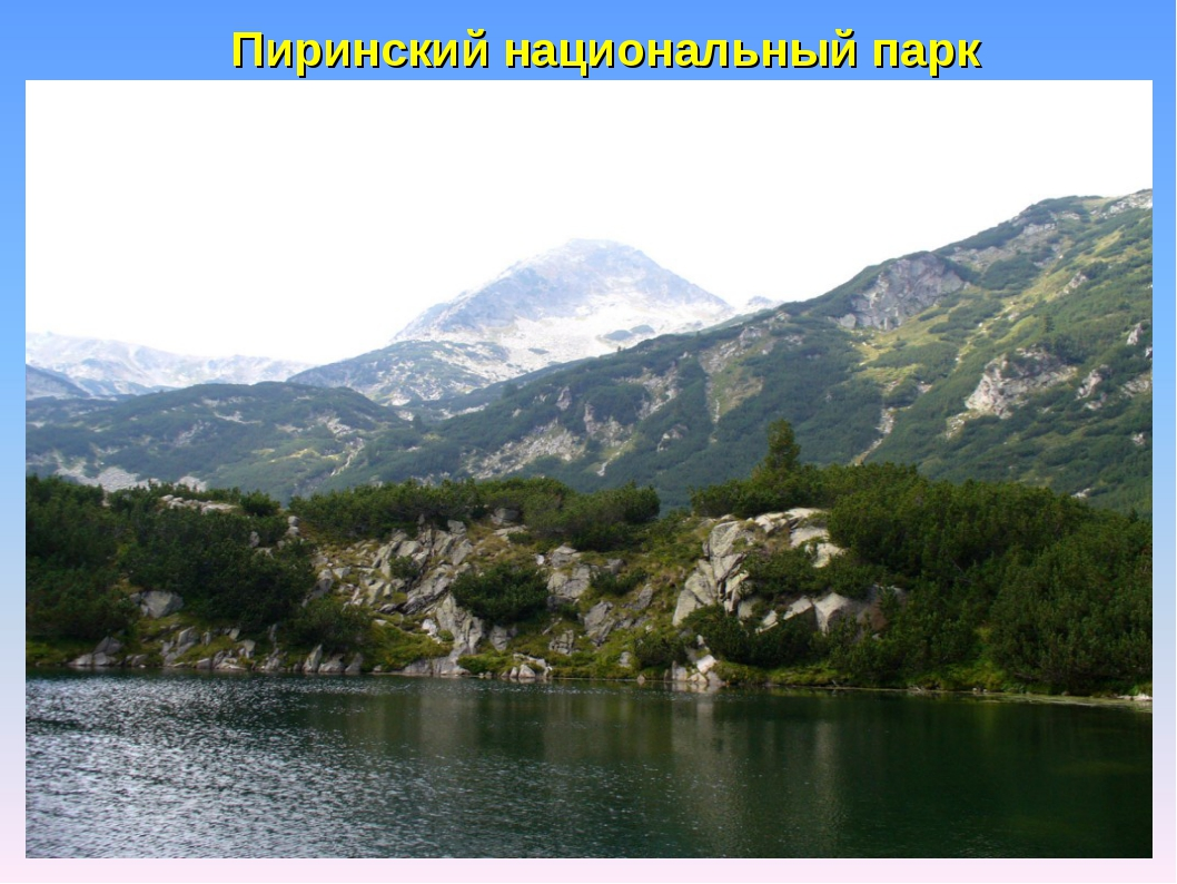 Пиринский национальный парк