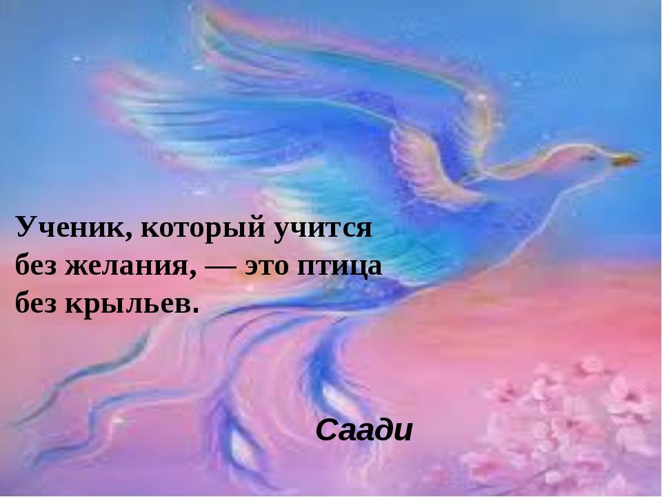 Ученик, который учится без желания, — это птица без крыльев. Саади