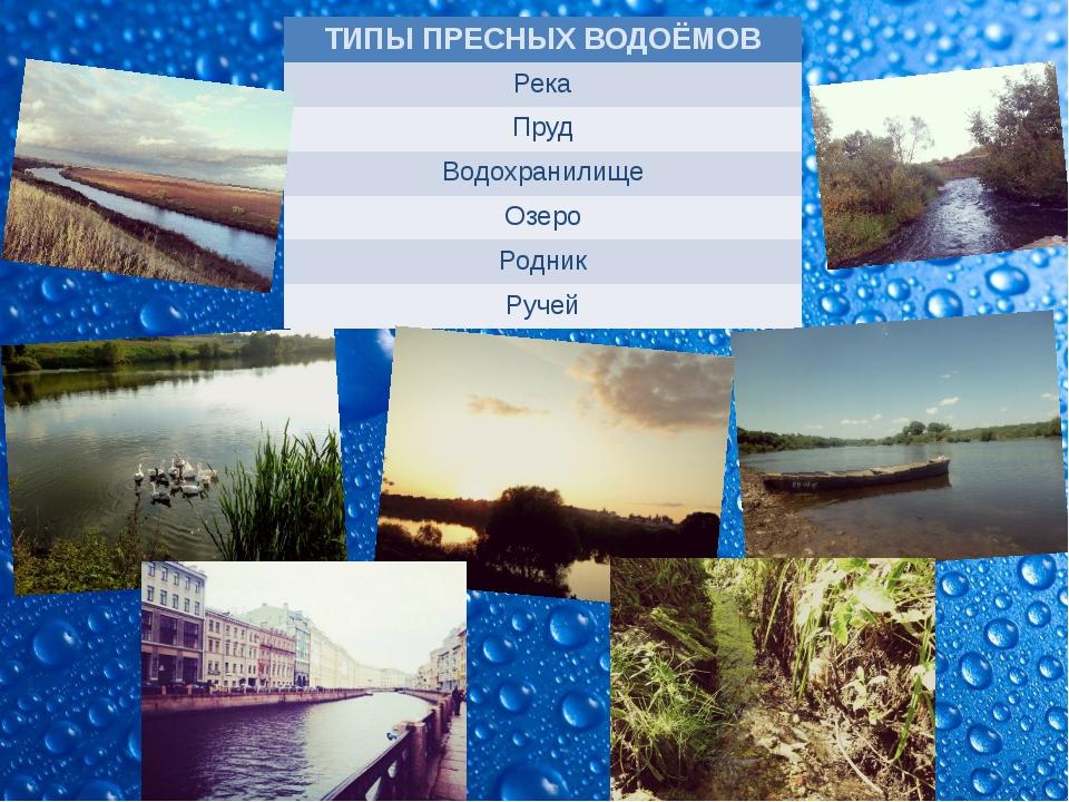 ТИПЫПРЕСНЫХ ВОДОЁМОВ Река Пруд Водохранилище Озеро Родник Ручей