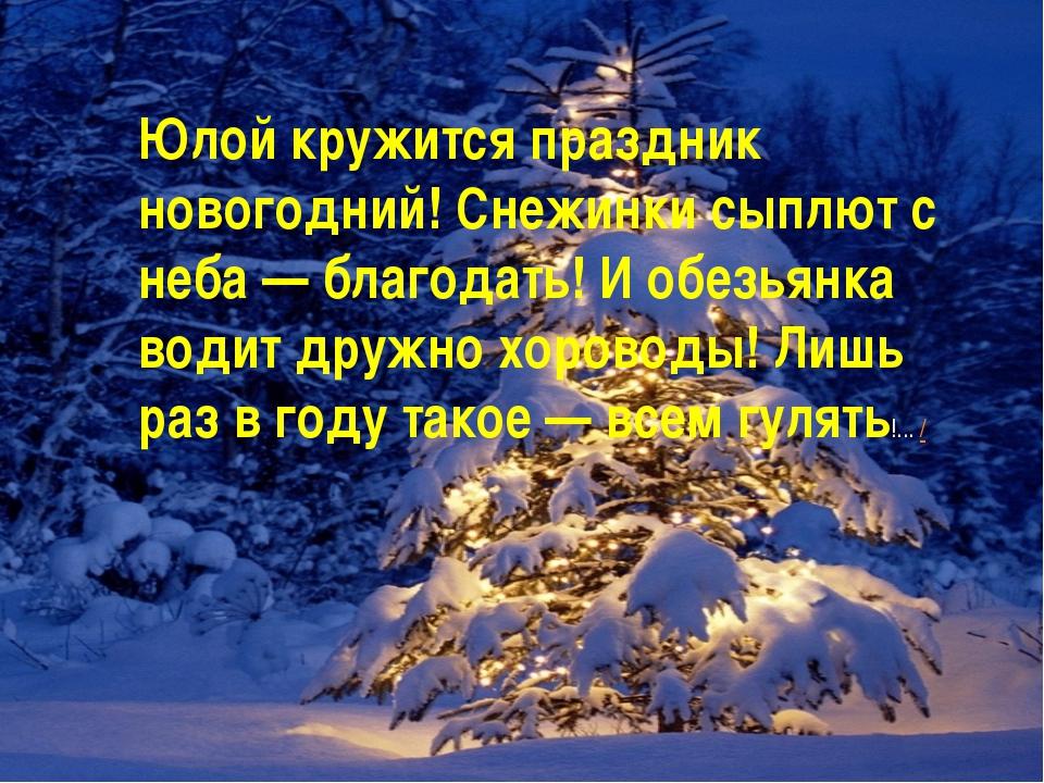 Юлой кружится праздник новогодний! Снежинки сыплют с неба — благодать! И обез...