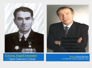 Булгаков,АндрейАлексеевич—ГеройСоветскогоСоюза. Анпилов,ВикторИванов