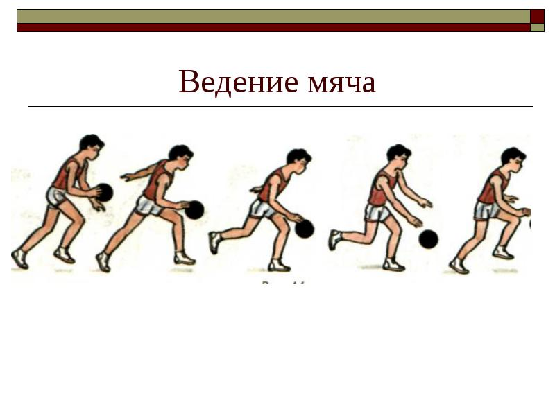http://fizrana5.ucoz.ru/vedenie_mjacha.jpg
