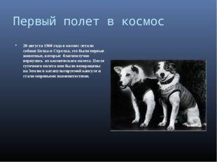 Первый полет в космос 20 августа 1960 года в космос летали собаки Белка и Стр