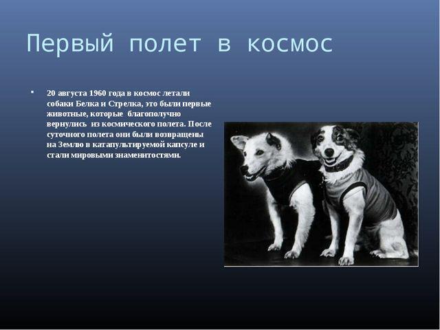 Первый полет в космос 20 августа 1960 года в космос летали собаки Белка и Стр...