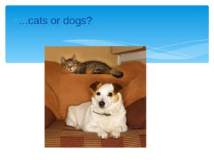 ...cats or dogs?