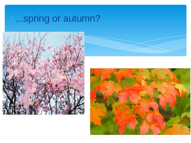 ...spring or autumn?