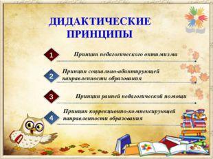 ДИДАКТИЧЕСКИЕ ПРИНЦИПЫ Принцип педагогического оптимизма 1 Принцип социально-