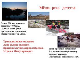 Мёша- река детства Длина 204 км, площадь бассейна 4180 км2.  Третья часть