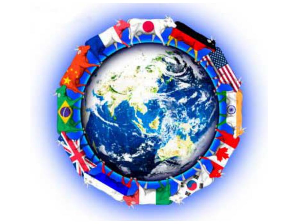 Проблемы мировой экономики связанные с глобализацией