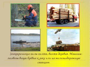 Электрические пилы пилят, валят деревья. Машины-лесовозы везут брёвна к реке