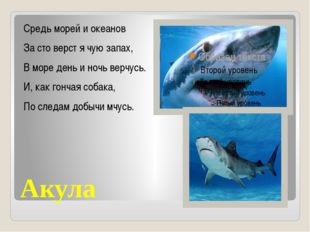 Акула Средь морей и океанов За сто верст я чую запах, В море день и ночь верч