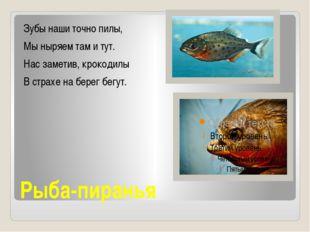 Рыба-пиранья Зубы наши точно пилы, Мы ныряем там и тут. Нас заметив, крокодил