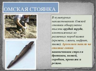 В культурных напластованиях Омской стоянки обнаружены тысячи орудий труда, из