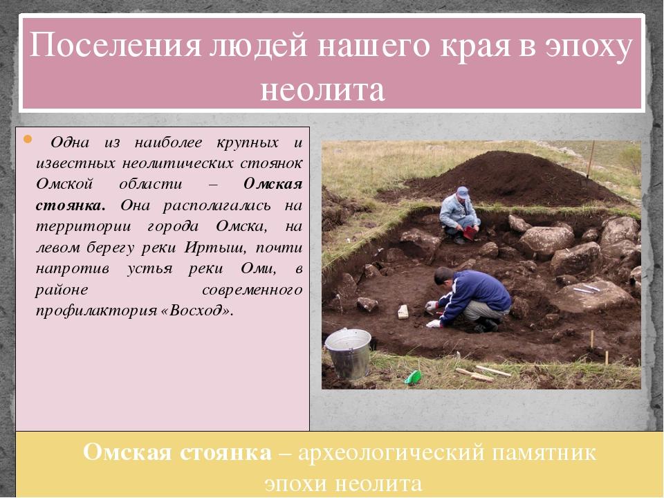 Одна из наиболее крупных и известных неолитических стоянок Омской области –...