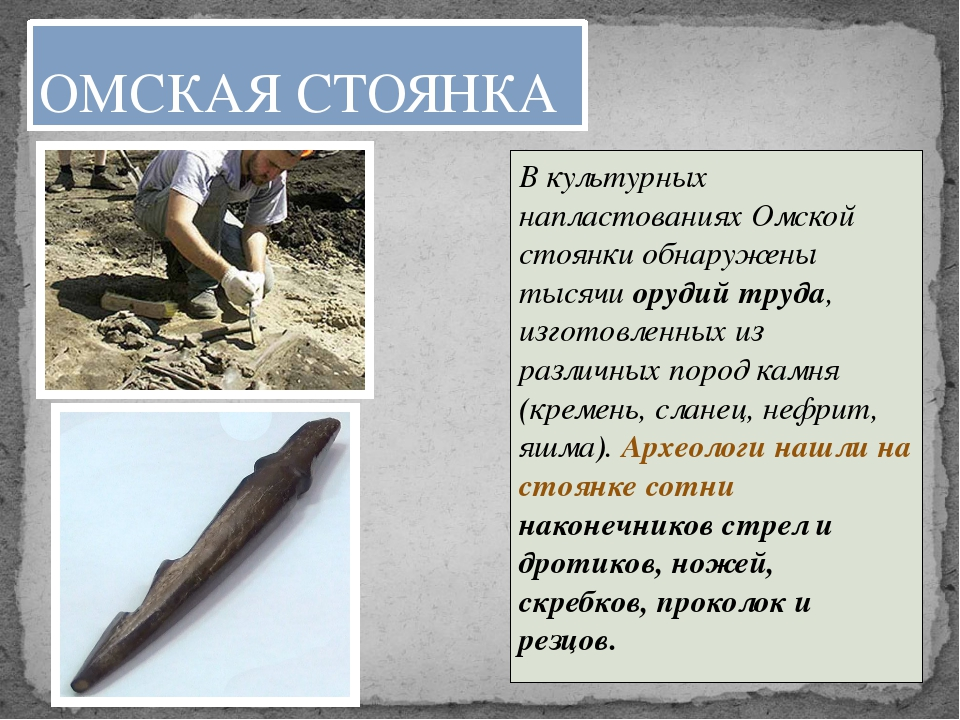 В культурных напластованиях Омской стоянки обнаружены тысячи орудий труда, из...