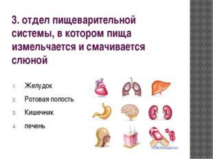 3. отдел пищеварительной системы, в котором пища измельчается и смачивается с