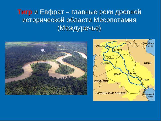 Тигр и Евфрат – главные реки древней исторической области Месопотамия (Междур...
