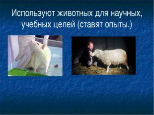 Используют животных для научных, учебных целей (ставят опыты.)