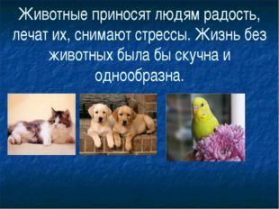 Животные приносят людям радость, лечат их, снимают стрессы. Жизнь без животны